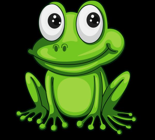Grenouilles Frog Tube Dessin Grenouille Grenouille Art Illustration De Grenouille