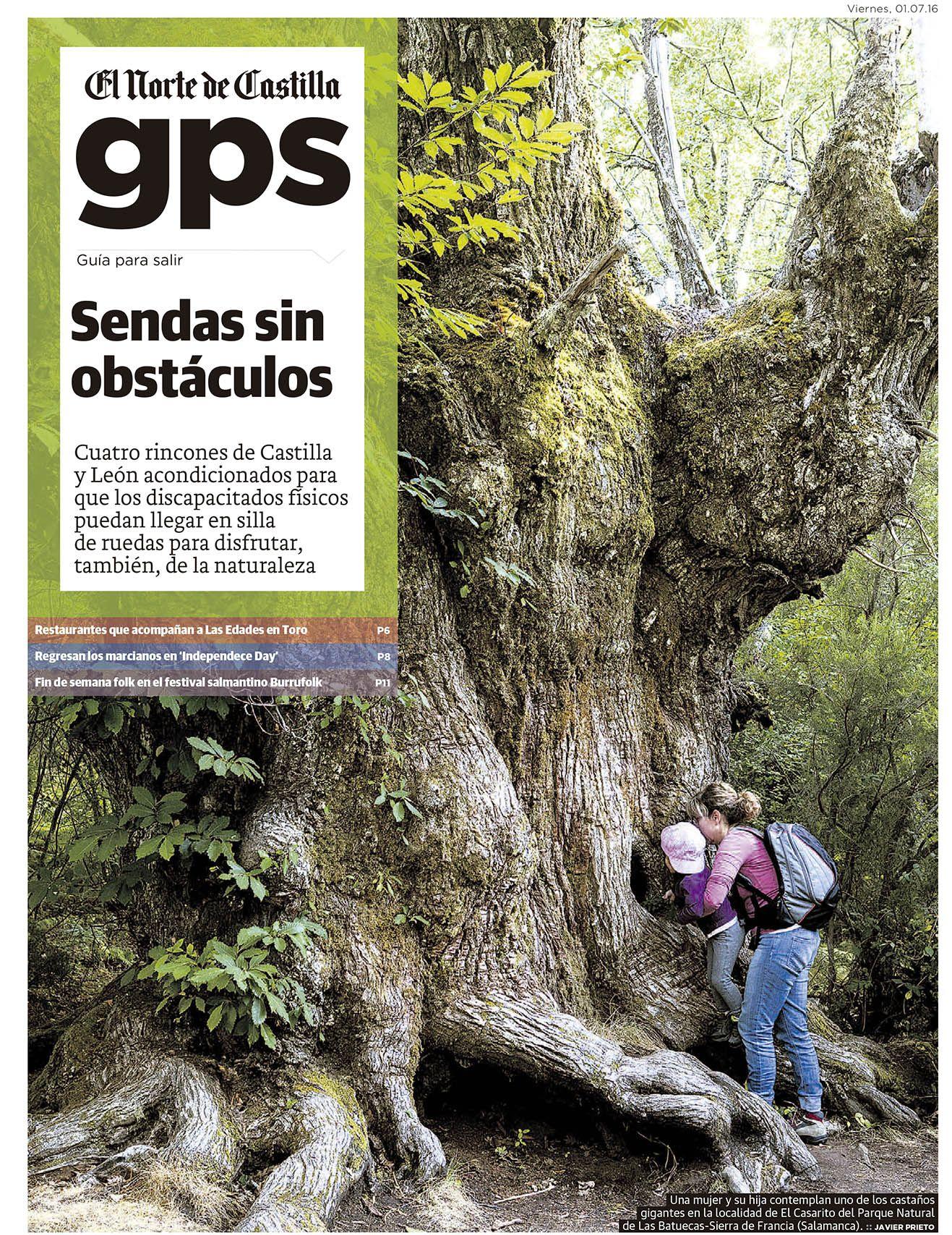 Rincones Verdes De Castilla Y León Que Pueden Visitarse En Silla De Ruedas Siempre De Paso Silla De Ruedas Viajes Turismo