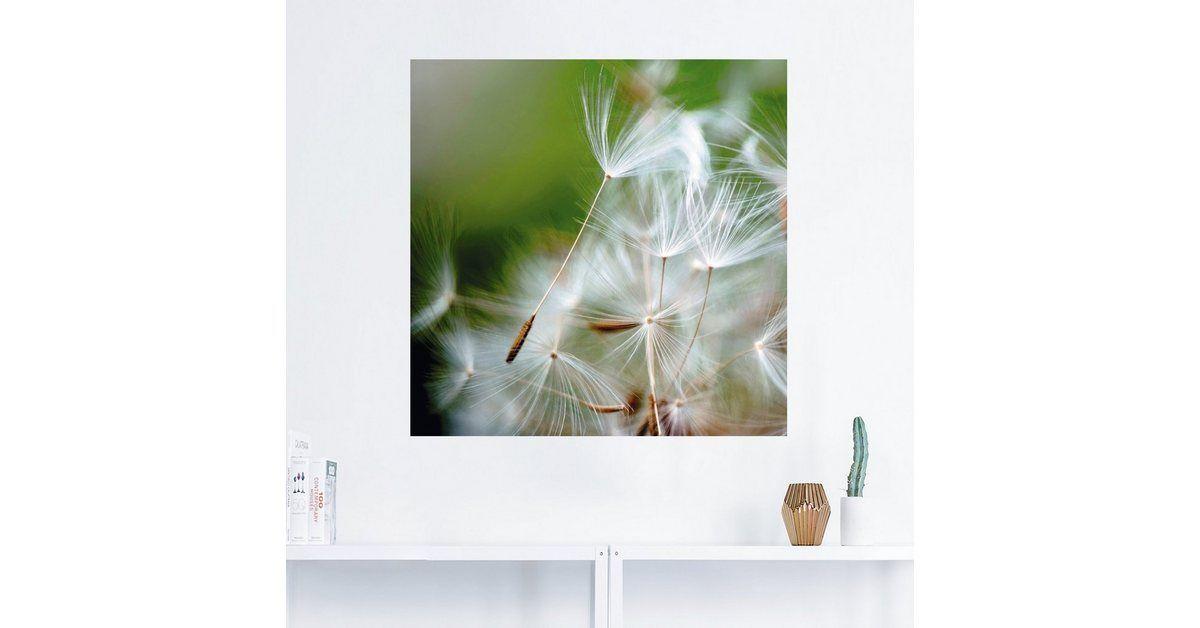Photo of Wandfolie, Premium Wandfolie »Julia Delgado: Pusteblume kuschelweich«
