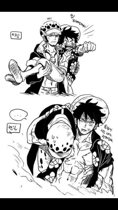 Imágenes LawLu (One Piece) - ♥LawLu♥   one piece   One
