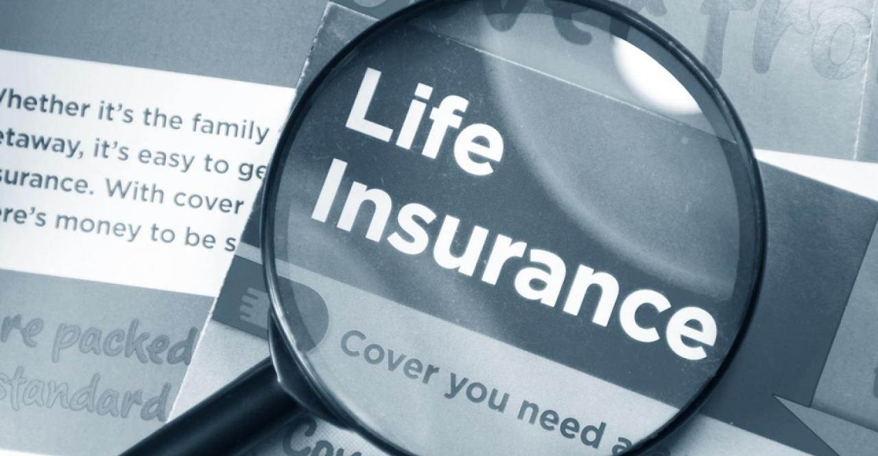 Protection Agency Key Performance Indicators Insurance Life