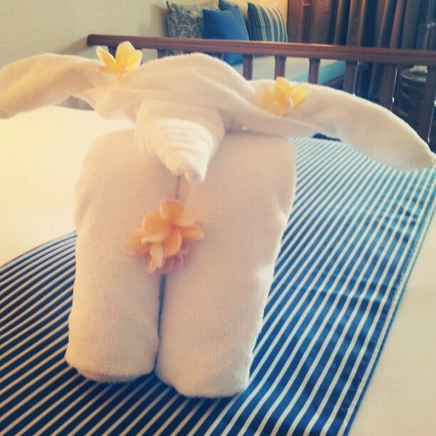 Baby Towel Elephant From Holiday Inn Resort Regent Beach Cha Am Thailand Photo By Twitter User Cambelles Baby Towel Holiday Inn Cha Am