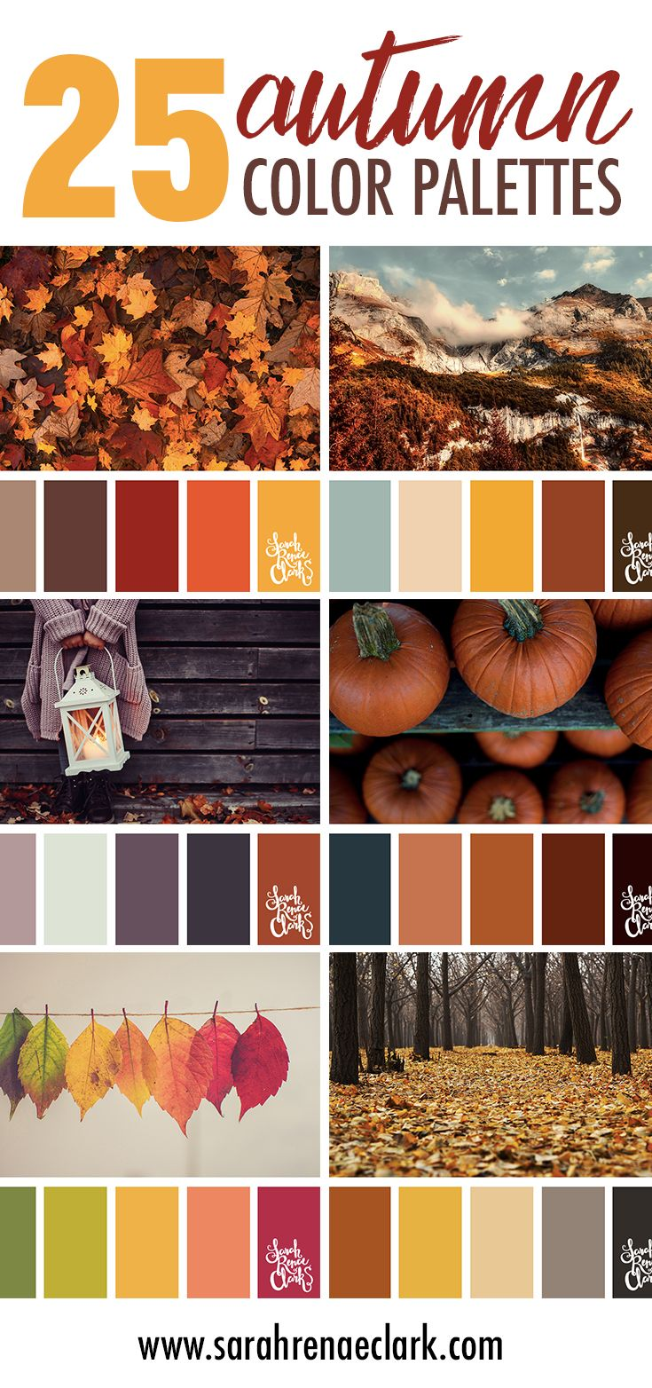 Fall Color Schemes 25 Color Palettes Inspiredthe Pantone Fall 2017 Color Trends