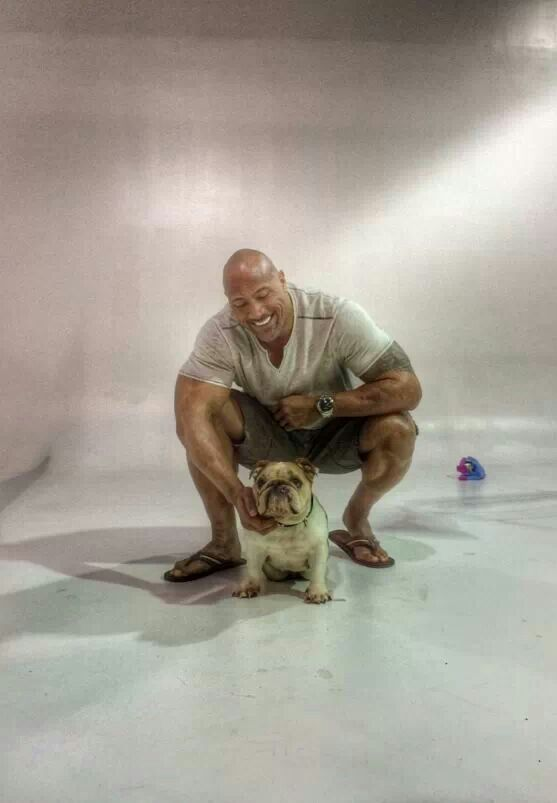 Dwayne The Rock Johnson And He Loves Dogs Does He Get
