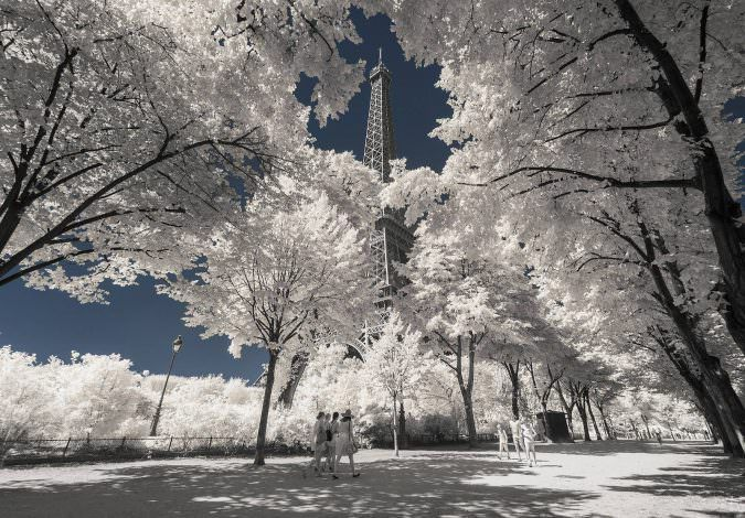 ?Invisible Paris? la Parigi agli infrarossi del fotografo Pierre-Louis Ferrer che sembra un bosco di alberi in fiore