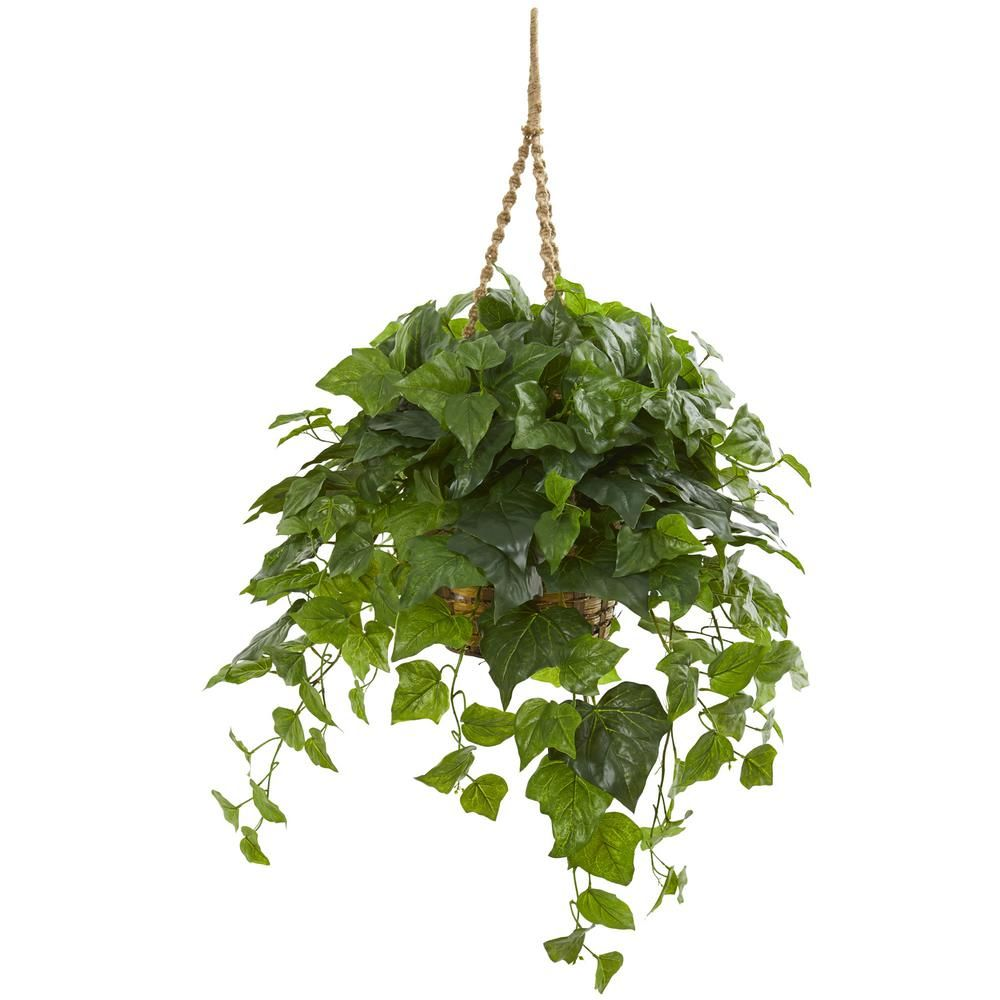 Nearly Natural Indoor 38 London Ivy Artificial Plant In Hanging