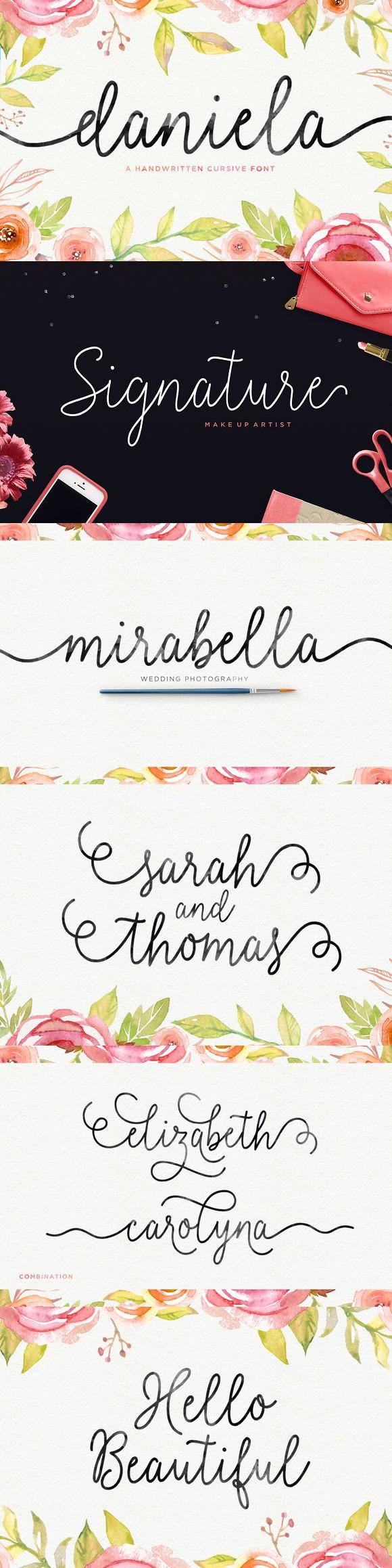Daniela Script Wedding fonts, Typography fonts, Elegant font