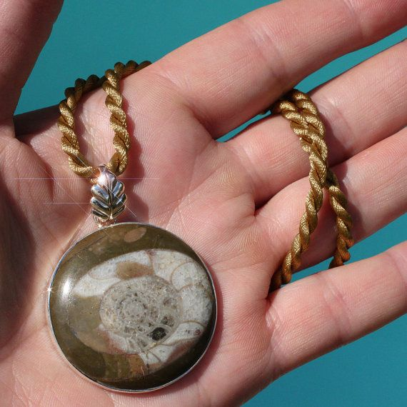 A Moment in Time  Beautiful Ammonite Fossil by TreasuresOfEarth, $25.00