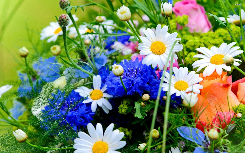 Spring Bouquet Wallpaper Летние цветы