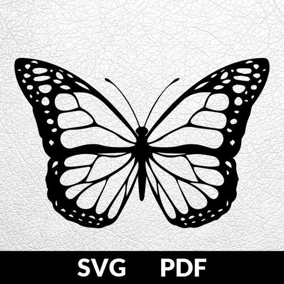 Photo of VIER Entwürfe SVG / PDF-Schnittdatei, Papierschneidevorlage, Schmetterlingssammlung, Papierschnitt, DIY-Projekt, Vinyl, Digitaldruckvorlage