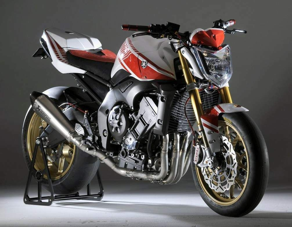 2006 yamaha fz 1 fazer motorcycle streetfighter photo 1 - Afbeeldingsresultaat Voor Yamaha Fz1n