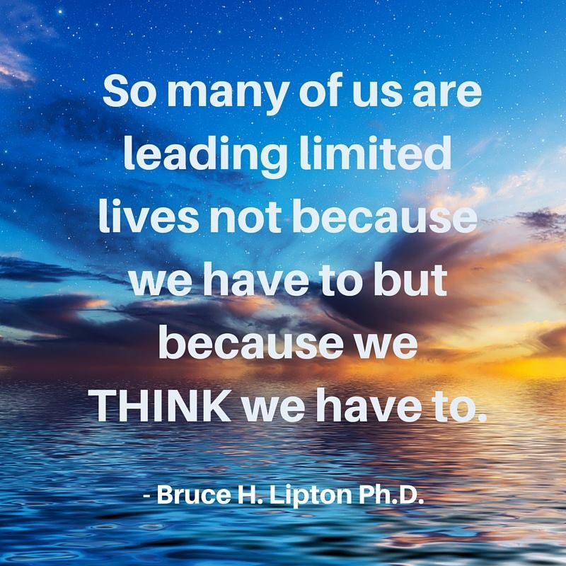Bruce Lipton At Biologyofbelief Twitter Life Quotes Life