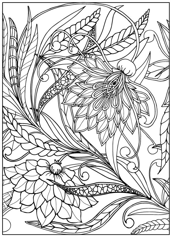 Coloring book for adult and older children. Coloring page with vintage flowers. Outline drawing..
