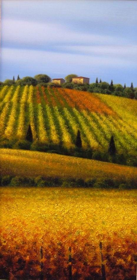 """""""1 Toscana - Vigneti"""" di MassimilianoNocchi"""
