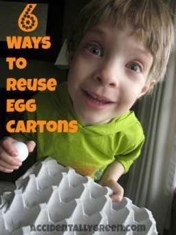 Before you throw your egg cartons away, you can reuse them when crafting or gardening: