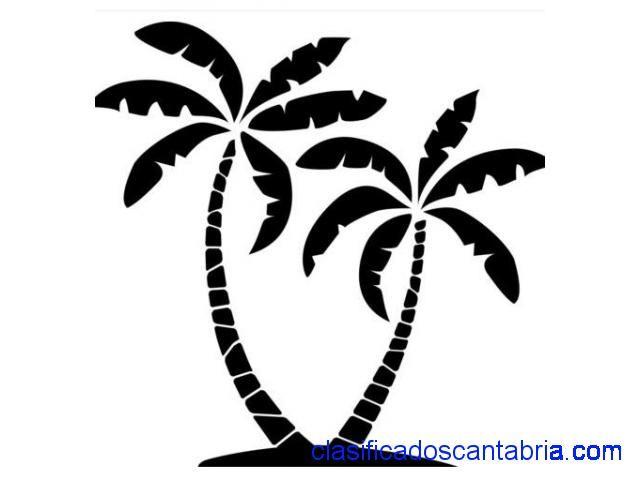 palmeras siluetas