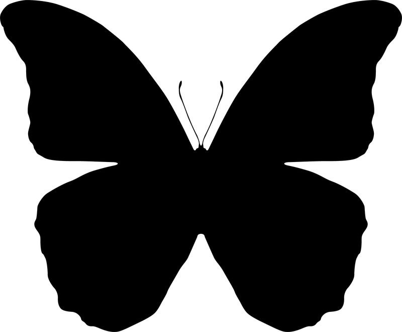 Http Www Clipartbest Com Clipart Di6akqzyt Butterfly Art Drawing Silhouette Butterfly Silhouette Clip Art