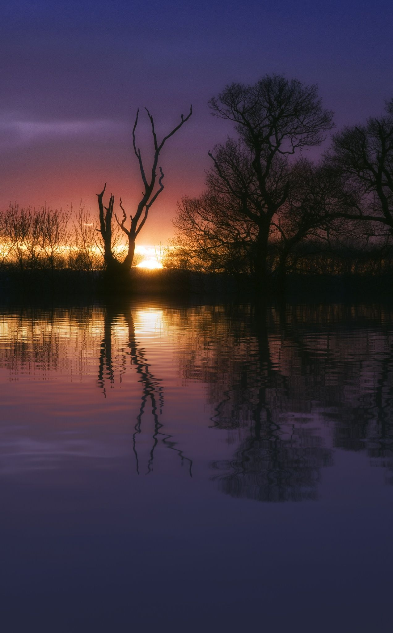 The sun is dropping by Ann  on 500px