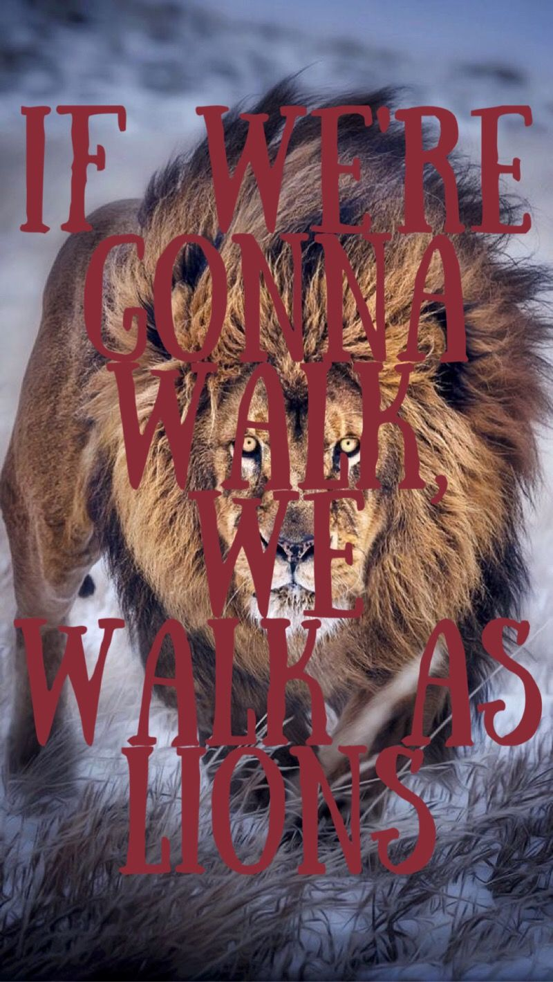 Learn These Skillet Lions Song Lyrics {Swypeout}