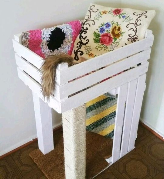 Cool Cat Houses For Cool Cats DIY Cat Houses