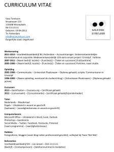 curriculum vitae   voorbeeld standaard cv | afwerking | Pinterest