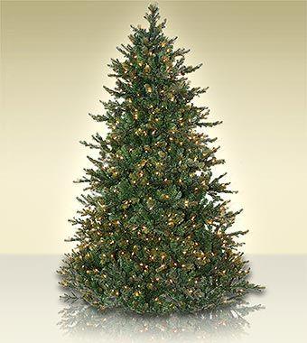 Artificial Christmas Tree Types.Glendale Fir 7 Foot Artificial Christmas Tree Christmas