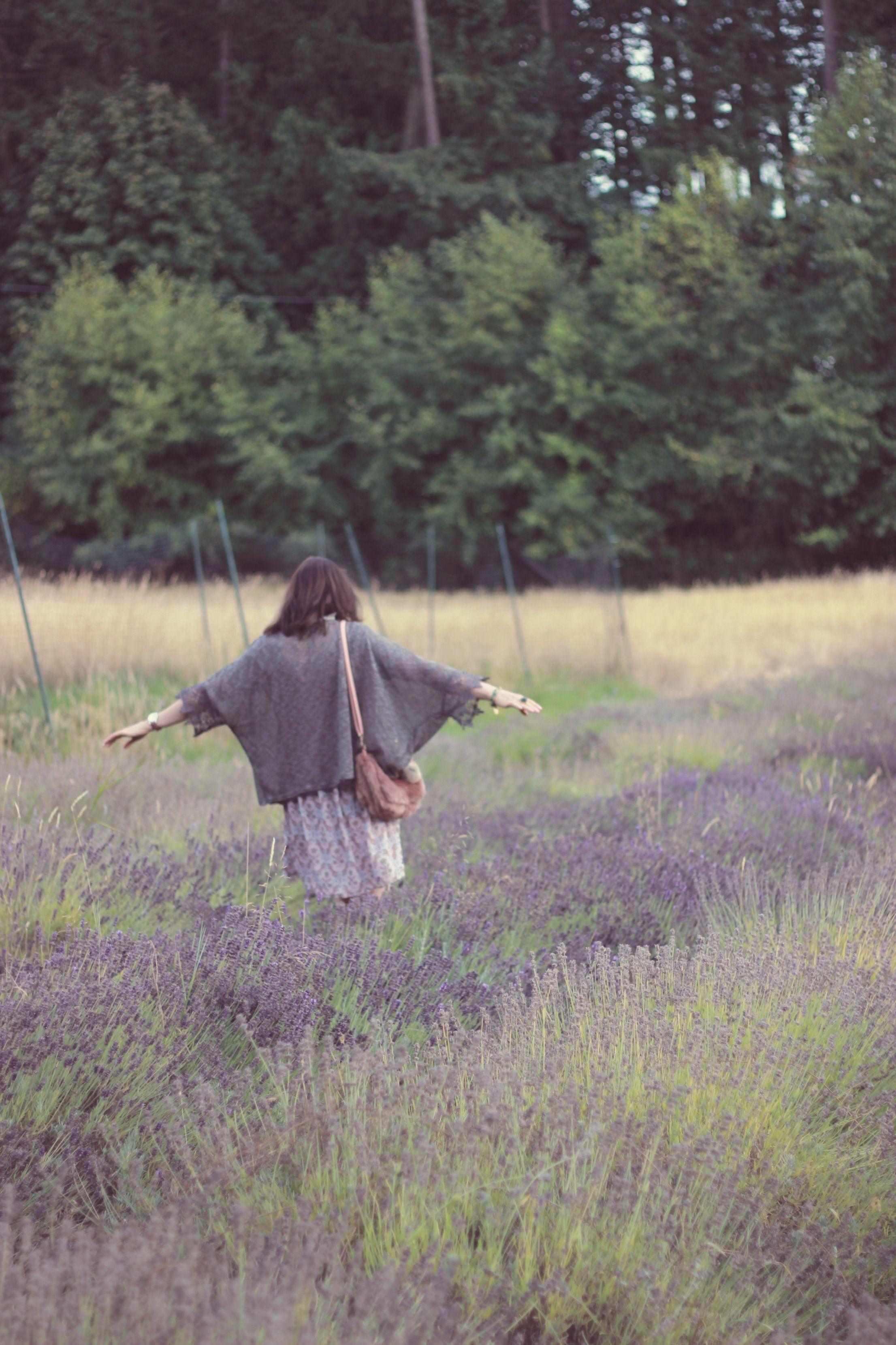 Long Meadow Farm, Saanich, Lavender Farm, Vancouver Island