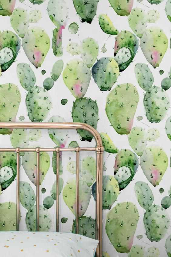 Cactus Wallpaper Wallpaper Large Wall Decals Vinyl Wallpaper