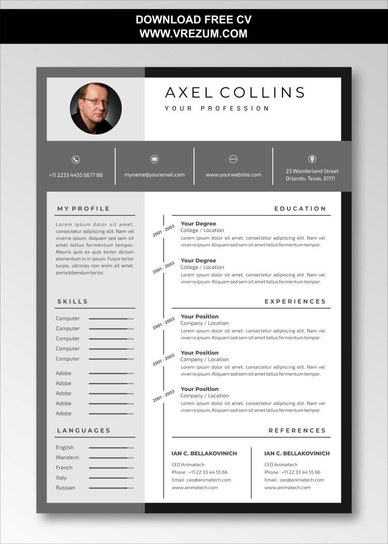 Editable Free Cv Templates For Business Development Manager Cv Template Free Cv Template Business Development