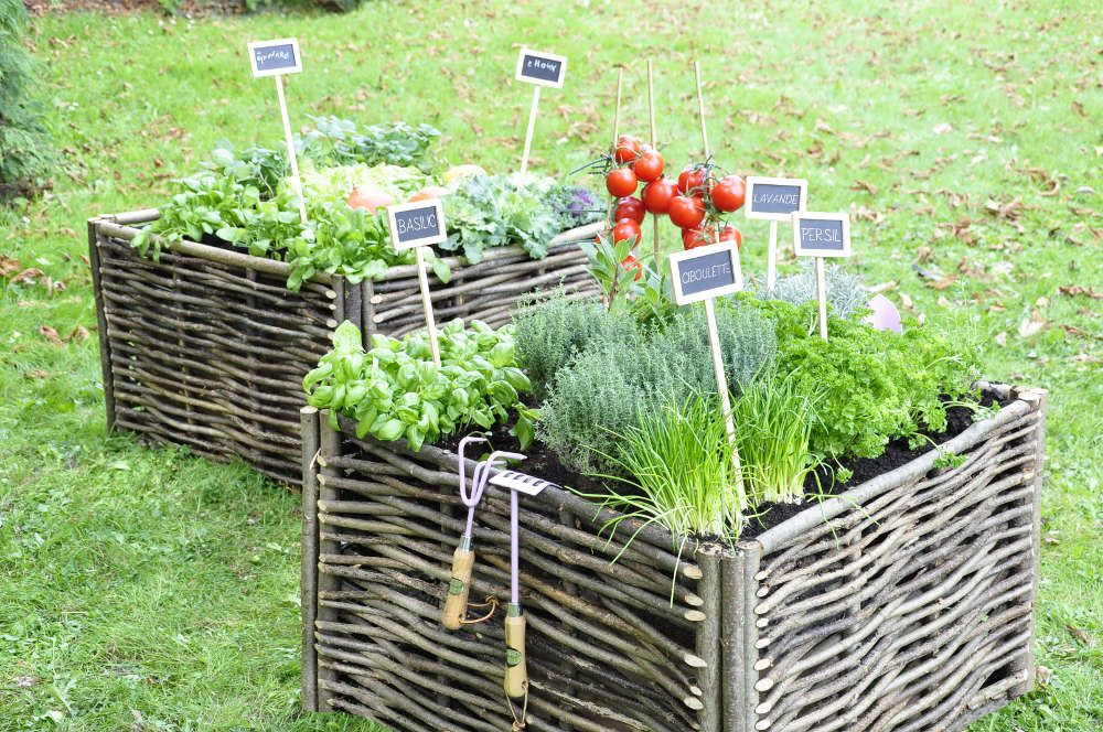 Pour cr er votre propre potager dans un petit espace ou pour d corer de fa on harmonieuse votre - Petit jardin potager carre ...