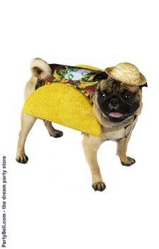 Taco Dog Costume Sanantonio Fiesta Weloveyourdog Pawsatx