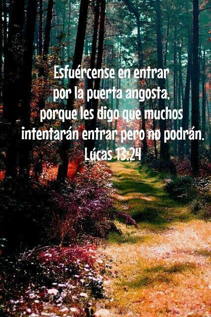 Lúcas 13:24
