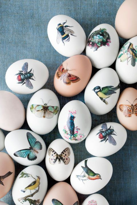 """Temporary Tattoo Eggs The secret behind these botanical beauties? CL contributing editor Jodi Kahn used temporary tattoo paper ($19.95 for five 8 1/2""""W x 11""""L sheets; decalpaper.com)."""
