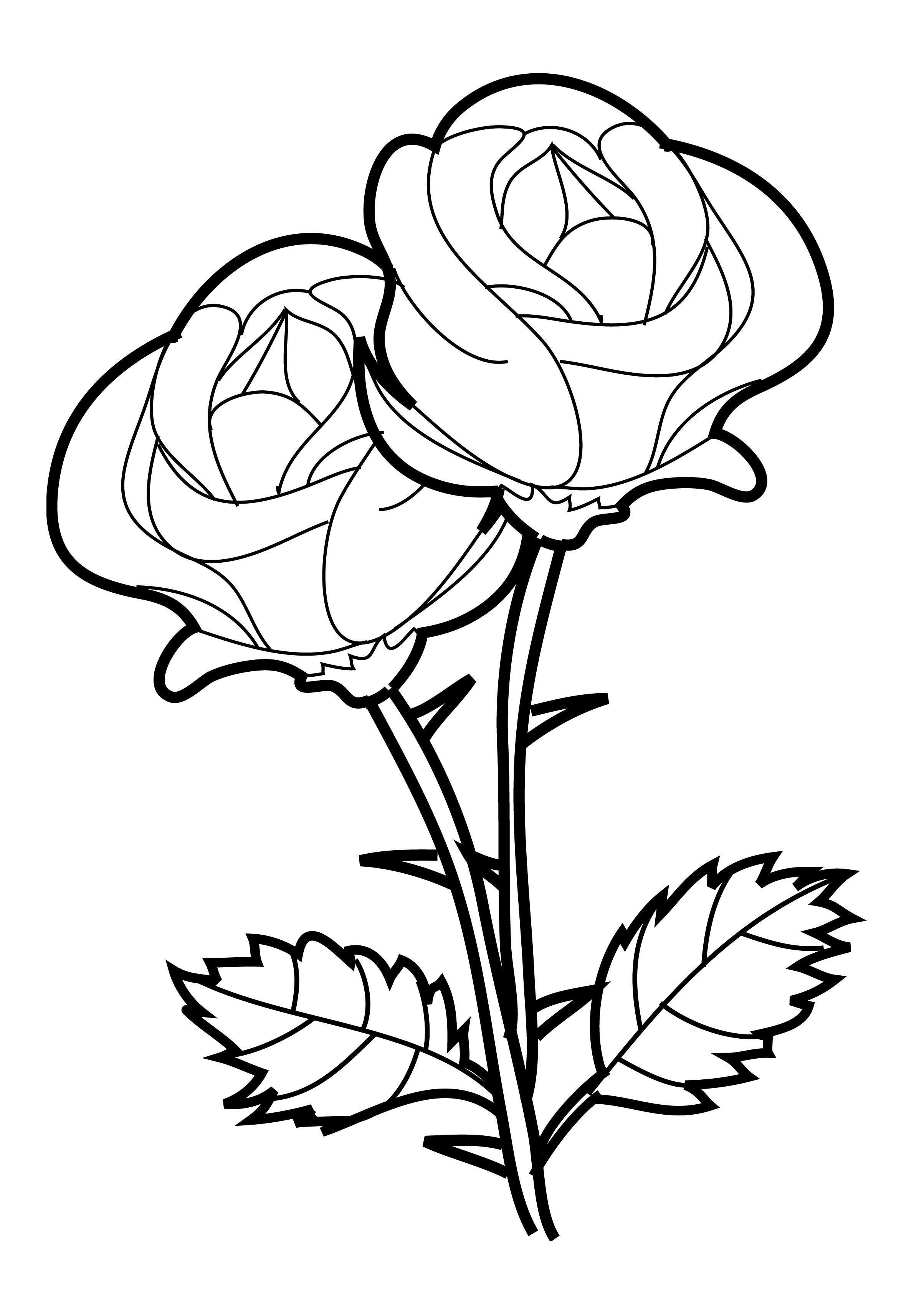 Beautiful-Rose-Coloring-Pages.jpg 2.407×3.366 pixels | Kleurplaten ...