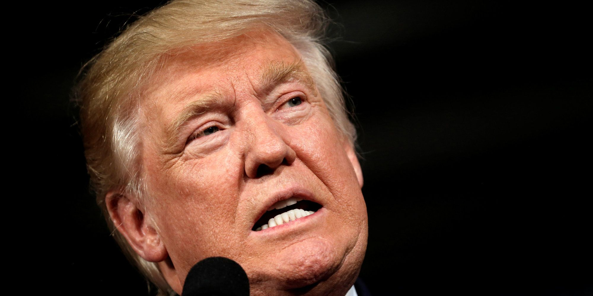 Florida Woman Donates Her Pubic Hair To Donald Trump | Huffington Post