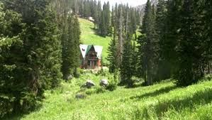 cabin in the forests - Google Search