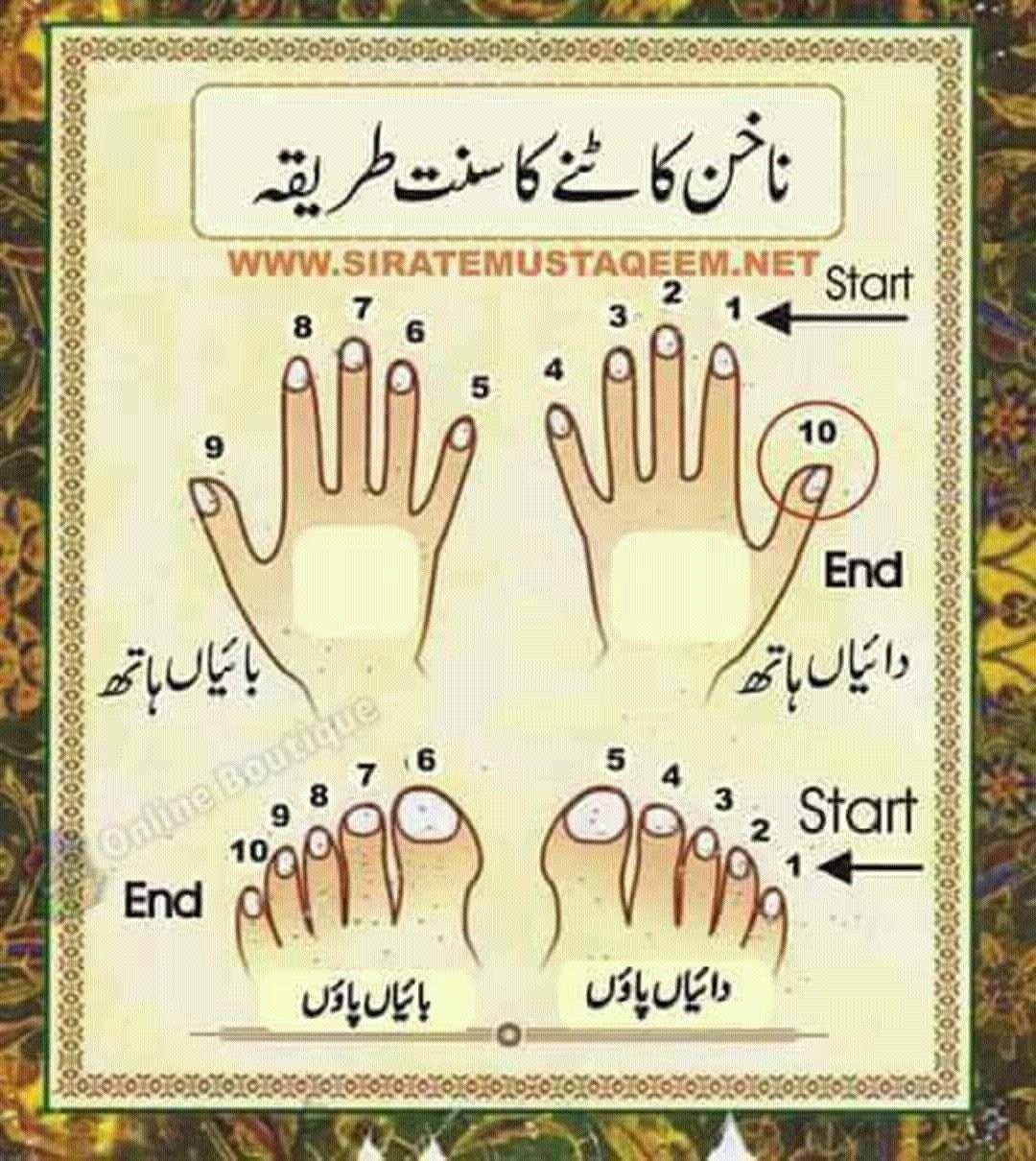Idea by saba afrin on Islamic... Islamic quotes quran