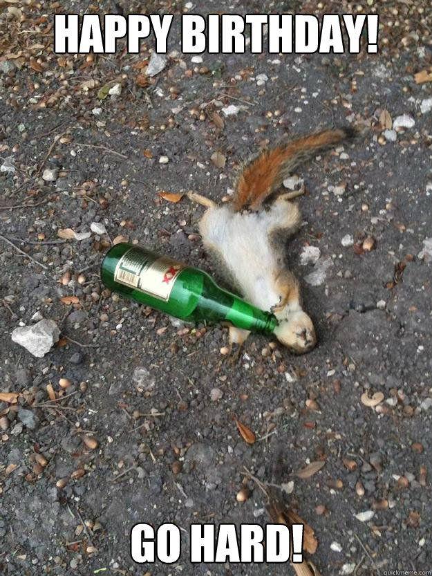 "Drunk squirrel: ""Happy Birthday! Go Hard!"""