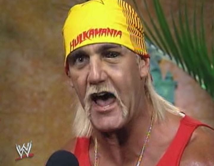 Hulk Hogan Eye Injury Wrestlemania 9