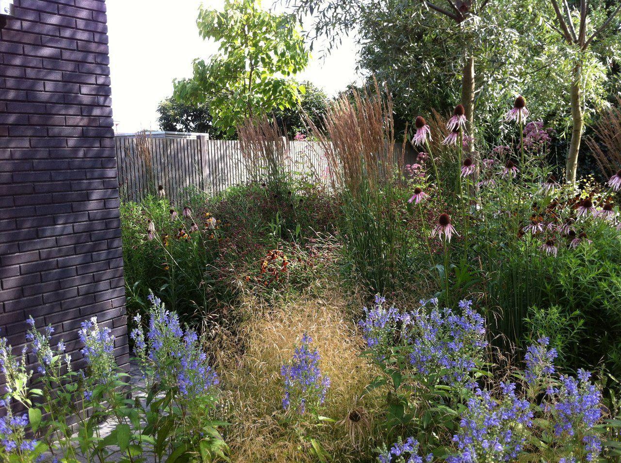 Onderhoudsvriendelijke tuin vaste planten en siergrassen for Tuinaanleg nuenen