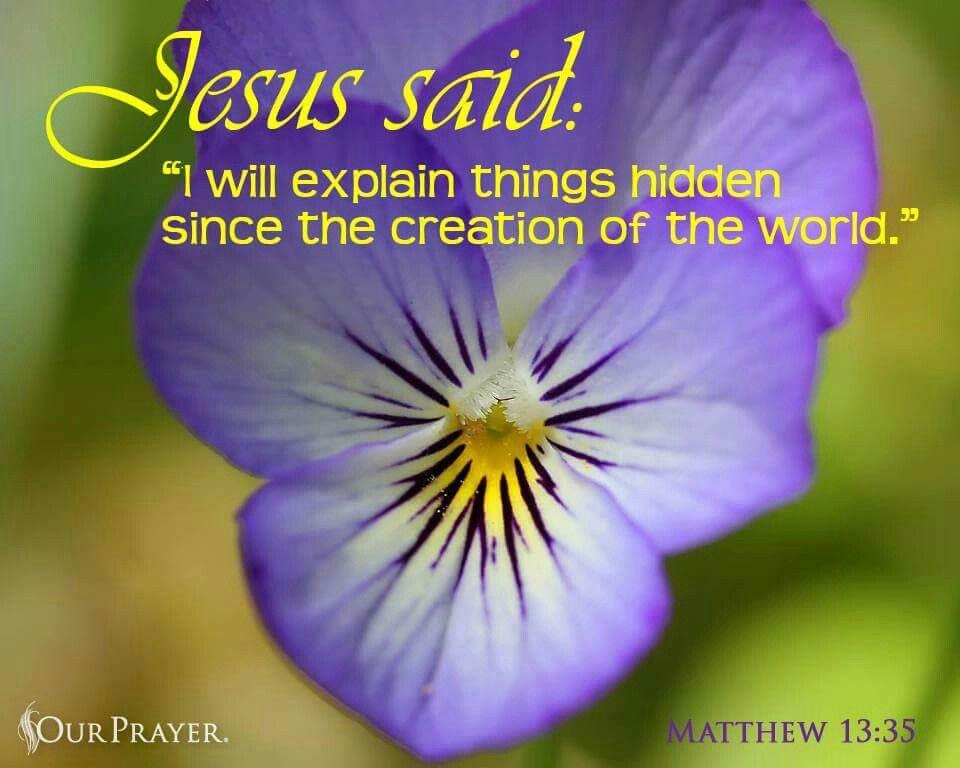 Matthew 13 35 Pansies Pansies Flowers Jesus Quotes