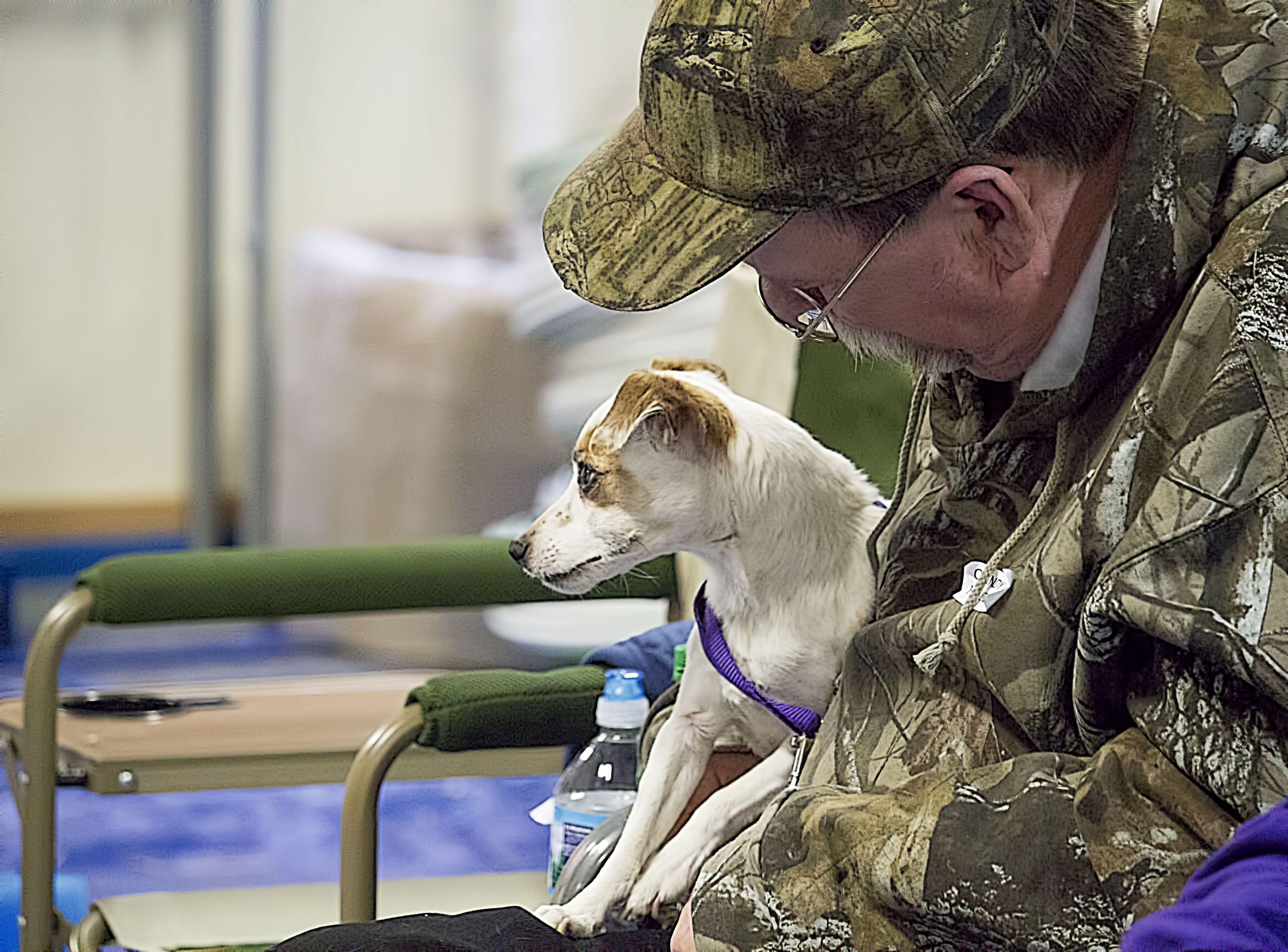 03 29 14 Sheboygan Dog Training Club Barn Hunt Trial