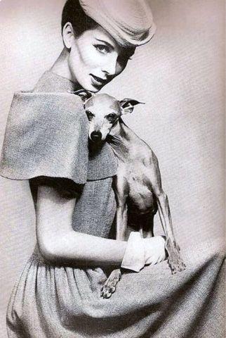 Pamela Willig: Dogs & Fashion