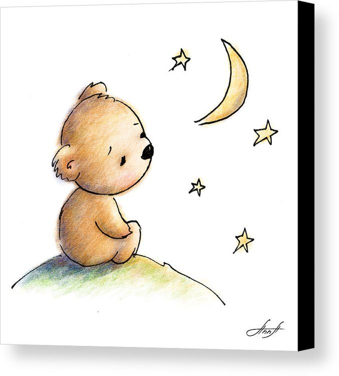 Drawing of cute teddy bear watching the star Canvas Print / Canvas Art by Anna Abramskaya