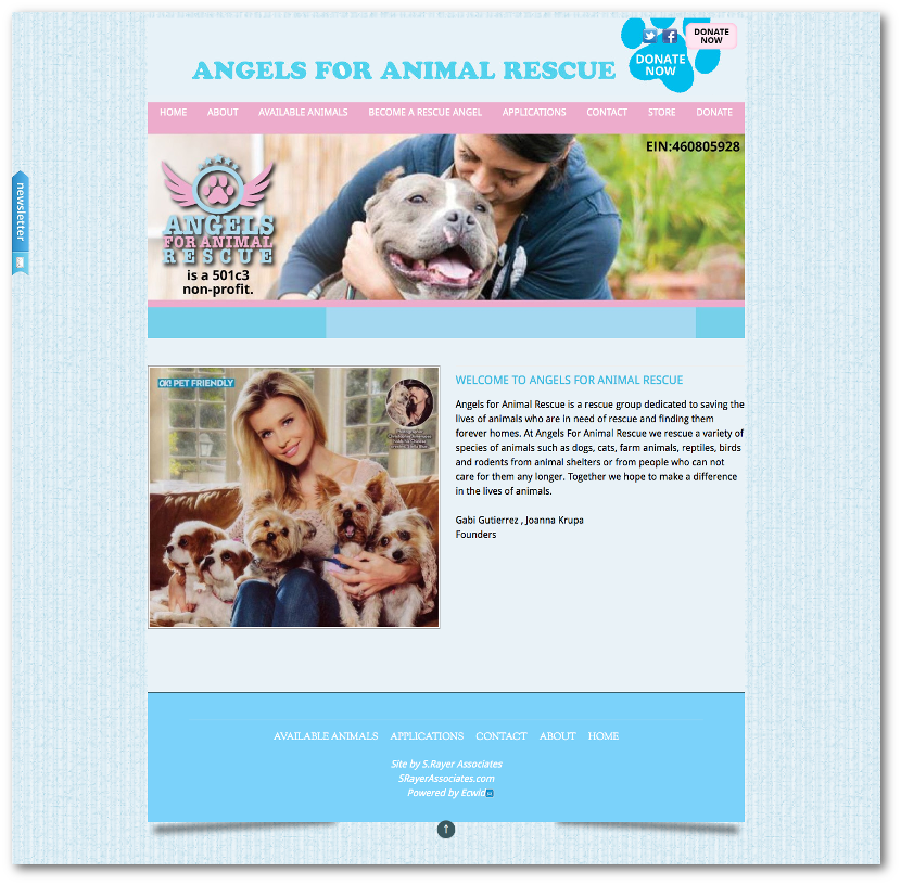 Angels for Animal Rescue Website Animal rescue, Cat