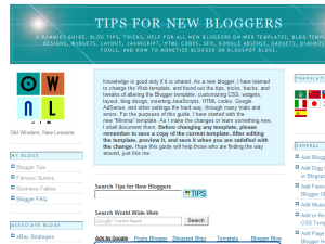 Blogger Tips and Tricks | Blogging Fusion Blog Directory