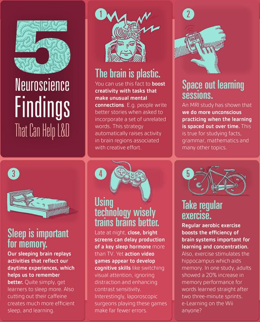 A Proven Way to Learn Anything According To Neuroscience