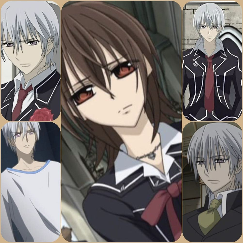 Yuki x Zero Vampire knights, Vampire knight, Popular anime