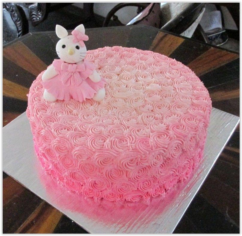 Shaded Pink Iced Birthday Cake Designed And Created By Yamuna Silva