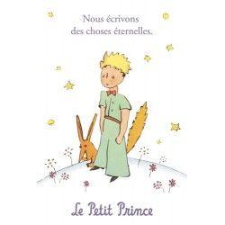 carte postale le petit prince nous crivont des choses ternelles the little prince. Black Bedroom Furniture Sets. Home Design Ideas